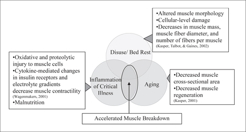 The Study of Activity in Older ICU Patients: An Integrative Review ...